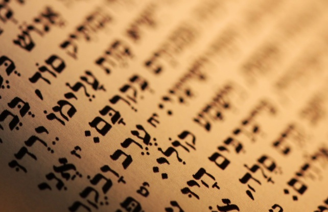 Torah – copie